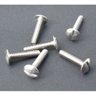 Stainless bodywork screws