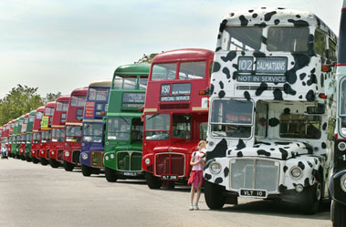 Routemaster bus lineup